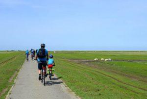 Radtouren über die Halbinsel Eiderstedt